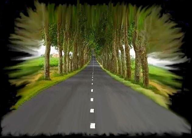 Travel down Memory Lane - Get Lost on Arlington Road